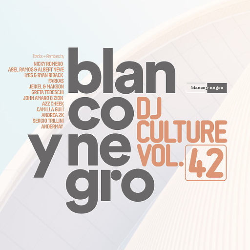 Various Artists - Blanco Y Negro DJ Culture Vol. 42