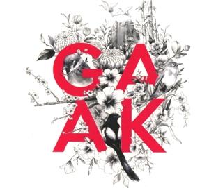 GAAK Project - Soar