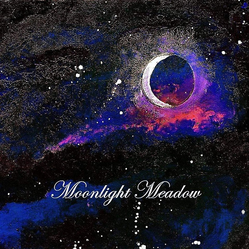 MOONLIGHT MEADOW - MOONLIGHT MEADOW