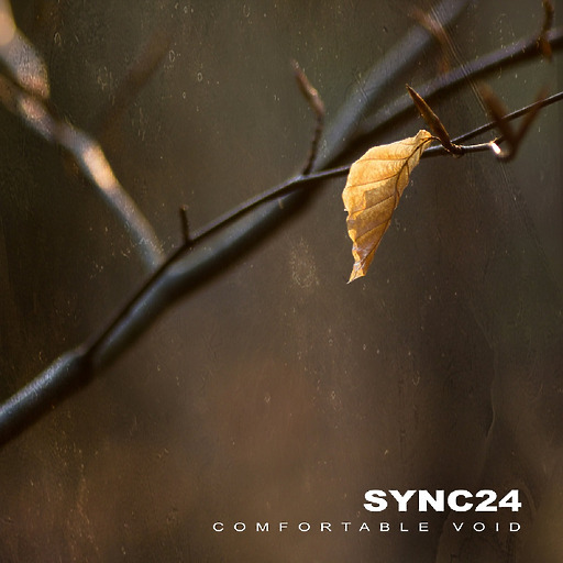 SYNC24S - SYNC24S - Comfortable Void (Remastered)