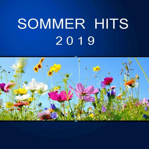 Various Artist - Various Artist - Sommer Hits 2019