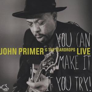 John Primer - John Primer - You Can Make It If You Try