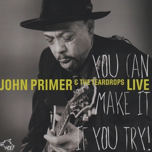 John Primer - You Can Make It If You Try