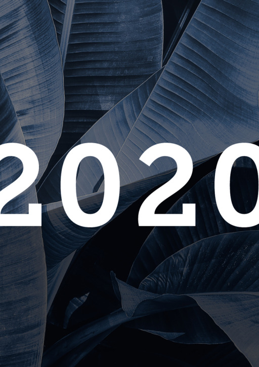 Heisenberg, Sophie - Tischkalender 2020 - Querkalender Palmenblätter