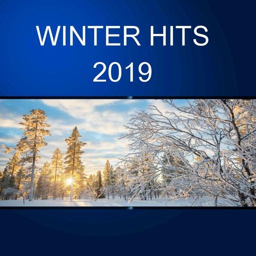 Various Artist - Various Artist - Winter Hits 2019