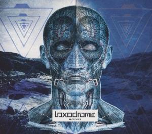 Loxodrome - Mirrors